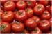 Fanfic / Fanfiction ; faça-me uma vitamina de tomate