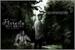 Fanfic / Fanfiction Floresta dos Anjos