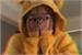 Fanfic / Fanfiction Híbrida amarela - Imagine - (Jungkook)