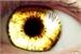 Fanfic / Fanfiction Olhos Dourados.