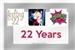 Fanfic / Fanfiction 22 Years