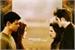Fanfic / Fanfiction Os Segredos Dos Cullens