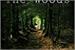 Fanfic / Fanfiction The Woods