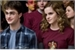 Fanfic / Fanfiction Harry e Hermione - amor verdadeiro