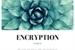 Fanfic / Fanfiction Encryption