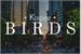 Fanfic / Fanfiction Birds (Romance Gay)