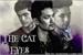 Fanfic / Fanfiction The Cat Eyes (Malec)
