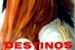 Fanfic / Fanfiction Destinos Selados