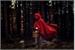 Fanfic / Fanfiction A garota da capa vermelha