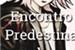 Fanfic / Fanfiction Encontro predestinado (Personagem x Leitor)