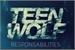 Fanfic / Fanfiction Teen Wolf - Season 8: Responsabilities