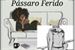 Fanfic / Fanfiction Pássaro Ferido