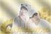 Fanfic / Fanfiction Reencontro - Byun BaekHyun (2TP)