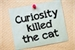 Fanfic / Fanfiction A Curiosidade Matou O Gato