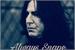 Fanfic / Fanfiction Always Snape