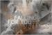 Fanfic / Fanfiction Falling For You