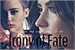 Fanfic / Fanfiction Irony of Fate