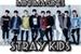 Fanfic / Fanfiction Mini imagines Stray Kids
