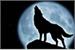 Fanfic / Fanfiction Os segredos da lua cheia