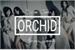 Fanfic / Fanfiction O R C H I D - Interativa K-Pop