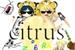 Fanfic / Fanfiction Um Citrus Chat da Zueira (EM PAUSA)
