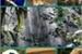 Fanfic / Fanfiction A selva do corpo