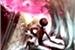 Fanfic / Fanfiction Deemo - Nunca Parta Sem Dizer Adeus