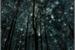 Fanfic / Fanfiction Compre as Estrelas - Crossmare