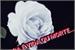 Fanfic / Fanfiction A Rosa Branca - A última batalha