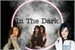 Fanfic / Fanfiction In The Dark-Camren G!p