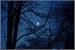 Fanfic / Fanfiction Infinito Azul