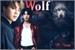 Fanfic / Fanfiction Wolf(jikook)