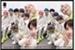 Fanfic / Fanfiction Namjin, jikook,Taeyoonseok(abo)