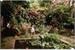 Fanfic / Fanfiction O Jardim Secreto (Imagine Bts)