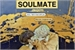 Fanfic / Fanfiction Soulmate - Jikook