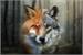 Fanfic / Fanfiction O lobo da lua e o raposo do sol-Mitw