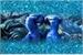 Fanfic / Fanfiction Rio - Uma Família para Blu