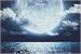 Fanfic / Fanfiction O Festival da Lua