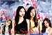 Fanfic / Fanfiction Love Scenario - IMAGINE JENSOO