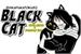 Fanfic / Fanfiction Black Cat - Shota Aizawa x Toshinori Yagi