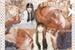 Fanfic / Fanfiction Experiment A12 ( Kim Taehyung )