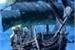 Fanfic / Fanfiction A vida de um simples otaku