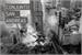 Fanfic / Fanfiction Conjunto San Andreas - Fillie