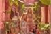 Fanfic / Fanfiction Namoradas -Interativa Mamamoo-