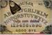 Fanfic / Fanfiction Ouija com doidos