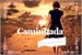 Fanfic / Fanfiction A Caminhada