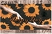 Fanfic / Fanfiction Sunflower - Rainy Day
