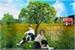 Fanfic / Fanfiction Todas as Árvores que Podemos Subir (Yang Jeongin)