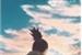 Fanfic / Fanfiction Primises - Shikamaru Nara
