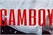 Fanfic / Fanfiction Camboy. sunhwall